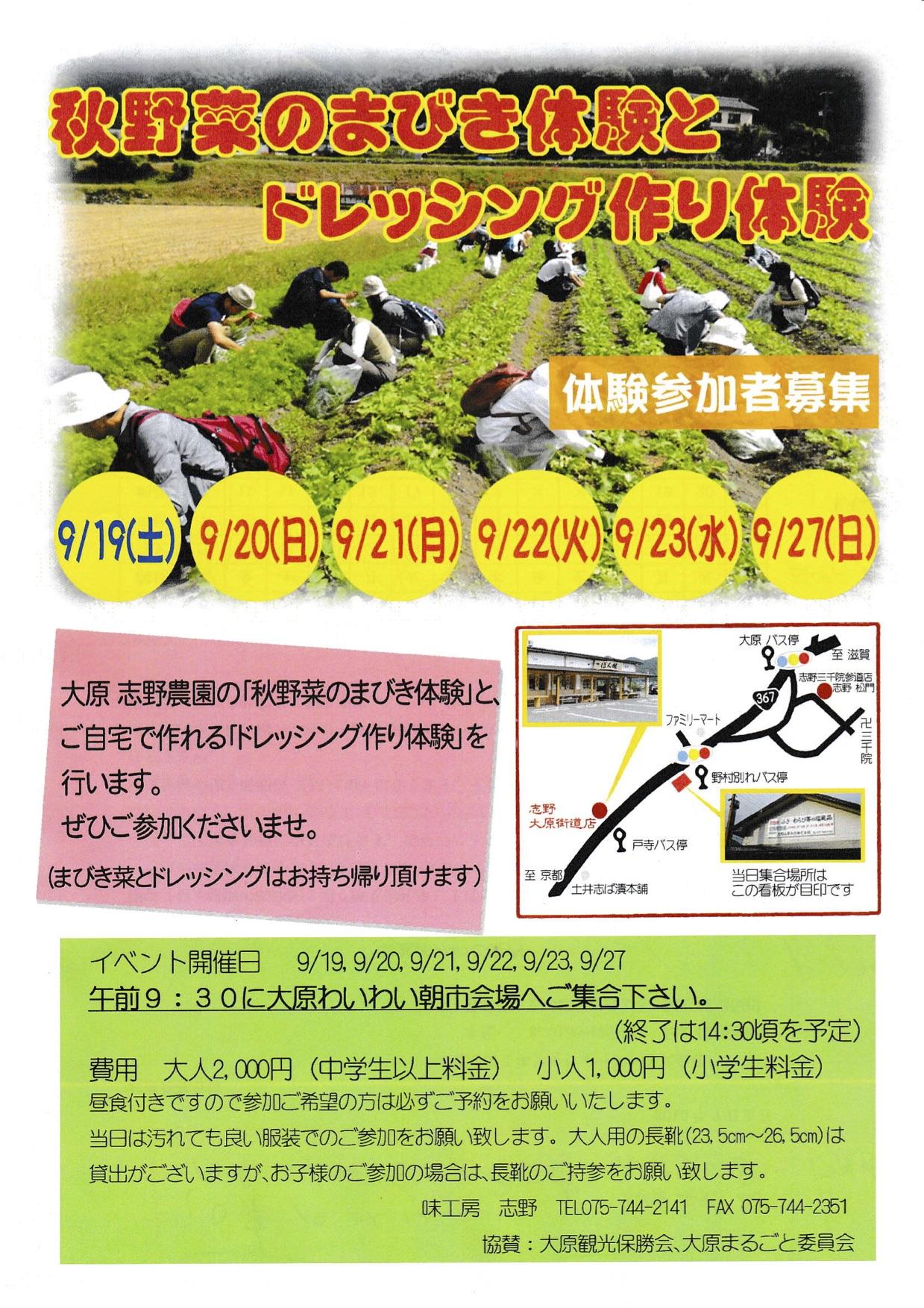9/19〜23・27 間引き菜の収穫とドレッシング作り