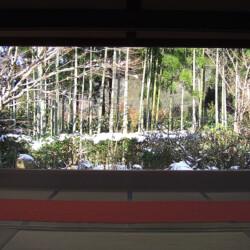 宝泉院 冬