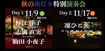 宝泉院 ライトアップ2019